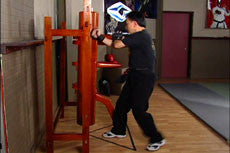 Wing Chun Wooden Dummy Training DVD with Sifu Chow 2