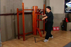 Wing Chun Wooden Dummy Training DVD with Sifu Chow 4