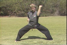 Kajukenbo 9 DVD set with Gary Forback 1