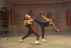 Mastering Savate 10 DVD Set with Salem Assli 2