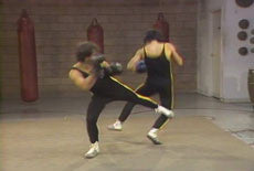 Mastering Savate 10 DVD Set with Salem Assli 3