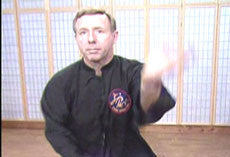 Hsing-I 10 DVD set with James McNeil - Budovideos