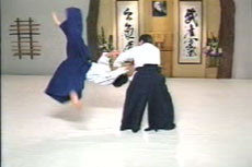 Aikido Principles & Techniques DVD by Mary Heiny 3