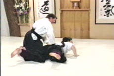 Aikido Principles & Techniques DVD by Mary Heiny 4