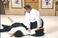 Aikido Principles & Techniques DVD by Mary Heiny 2