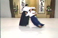 Aikido Principles & Techniques DVD by Mary Heiny 1