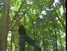 Ninjutsu with Robert Bussey 8 DVD Set 6