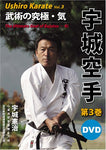 Ushiro Karate: Essential Principles of Bujutsu DVD 3 by Kenji Ushiro (Preowned) - Budovideos