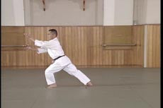 Yoshinkan Aikido DVD Box Set #1: Complete Techniques 8