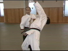 Yoshinkan Aikido DVD Box Set #2: Chokuden 3