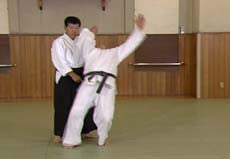 Introduction to Yoshinkan Aikido DVD by Kyoichi Inoue 6