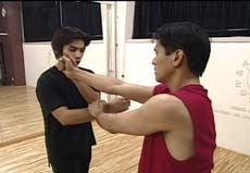 Jeet Kune Do DVD 2