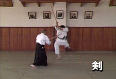 Yagyu Shingan Ryu DVD Vol 1 5