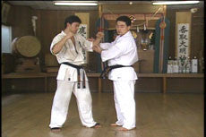 Introduction to Kyokushin Kumite DVD by Matsui 2