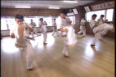 Introduction to Kyokushin Kumite DVD by Matsui 4