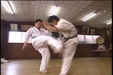 Introduction to Kyokushin Kumite DVD by Matsui 5