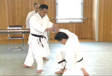 Yoshinkan Box Set 3: Aikido of Heaven & Earth 3 DVD Set 2