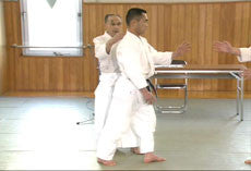 Yoshinkan Box Set 3: Aikido of Heaven & Earth 3 DVD Set 5