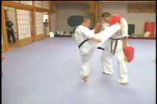 Kyokushin Karate Training Camp DVD 2