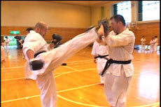 Kyokushin Karate Training Camp DVD 5