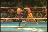 Shootboxing 20th Anniversary Blue Corner DVD - Budovideos