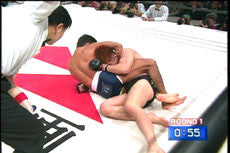 Best of Alexandre Franca Nogueira Fights MMA DVD - Budovideos
