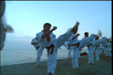 Enshin Method Vol 2 DVD with Joko Ninomiya 5
