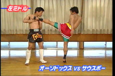 Super Muay Thai Techniques Vol 1 DVD 3