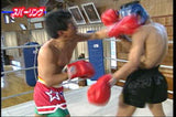 Super Muay Thai Techniques Vol 1 DVD - Budovideos Inc