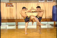 Super Muay Thai Techniques Vol 2 DVD 3