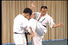 Hakuren Kaikan Best of Kumite DVD 2