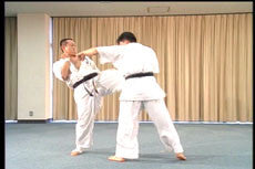 Hakuren Kaikan Best of Kumite DVD 3