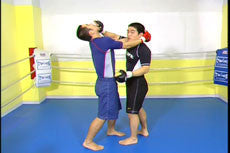 Complete Advanced MMA Instruction by Naoya Uematsu 2