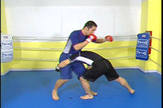 Complete Advanced MMA Instruction by Naoya Uematsu 3
