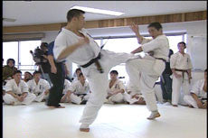 Kyokushin 100 Man Tournament DVD 3