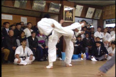 Kyokushin 100 Man Tournament DVD 5