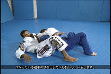 Super Jiu-Jitsu Techniques DVD with Bibiano Fernandes 3