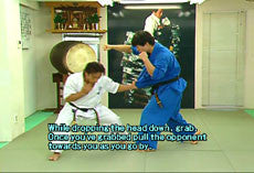 Kudo: 100 Most Advanced Fighting Techniques DVD 9