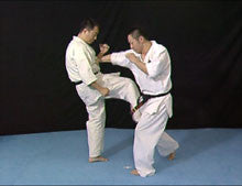 Born to be Strongest: Kyokushin Karate Instructional 4 DVD Set 7