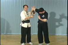 Chin Na In Depth DVD Vol 1-4 with Dr Yang, Jwing Ming 2