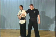 Chin Na In Depth DVD Vol 1-4 with Dr Yang, Jwing Ming - Budovideos