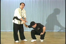 Chin Na In Depth DVD Vol 1-4 with Dr Yang, Jwing Ming 4