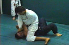 Gracie Jiu-jitsu In Action Vol 2 DVD - Budovideos