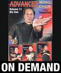 Advanced Wing Chun: Keys to Ip Man's Kung Fu Vol 11 with Samuel Kwok (On Demand) - Budovideos
