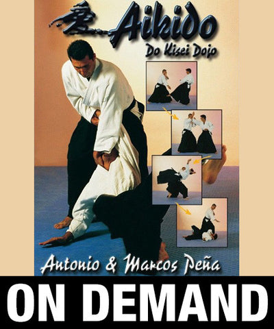 Aikido Kisei Dojo with Antonio & Marcos Pena (On Demand) - Budovideos