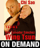 Chi Sao Wing Tsun TAOWS Academy by Salvador Sánchez (On Demand) - Budovideos