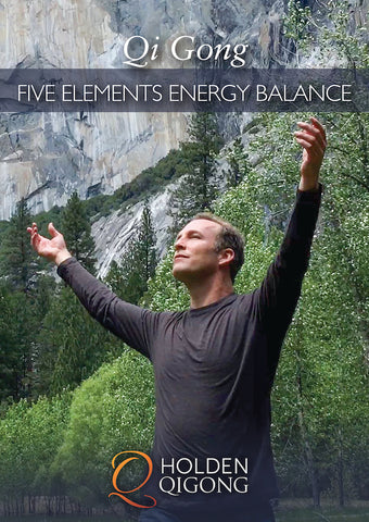 Qi Gong Five Elements Energy Balance DVD with Lee Holden