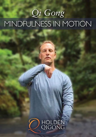 Qi Gong Mindfulness in Motion DVD with Lee Holden - Budovideos