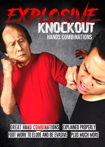 Explosive Knockout Hands Combinations DVD by Leo Fong - Budovideos