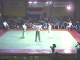 1991 World Oyama Karate Dutch Fighting Championships 2 DVD Set - Budovideos